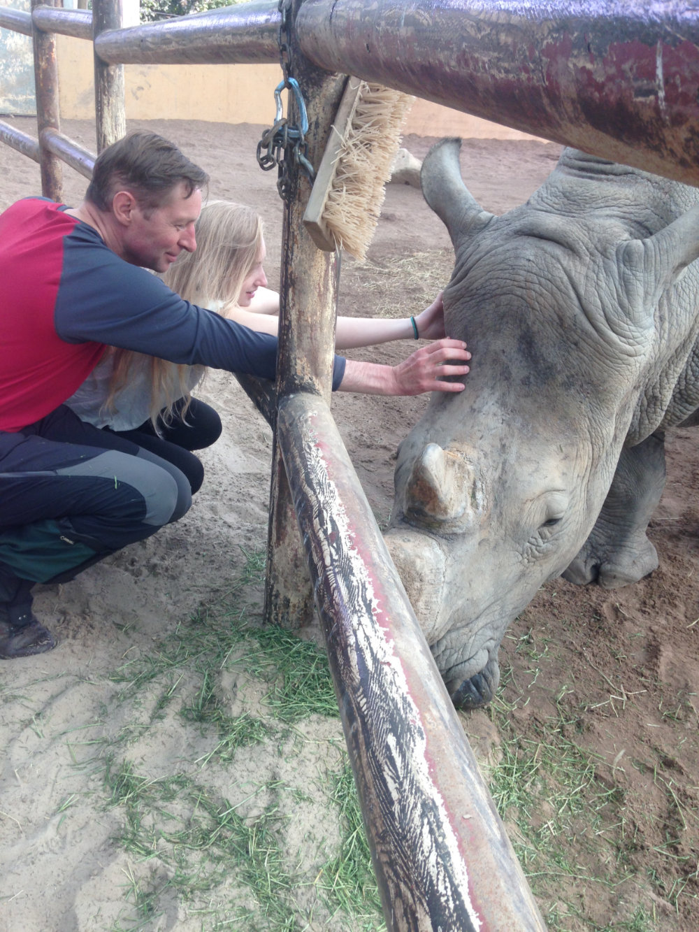 Heather and Archie Scratching a Rhino
